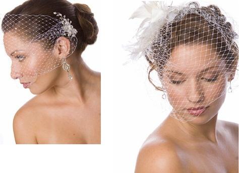 Birdcage veil with feather-crystal headpiece